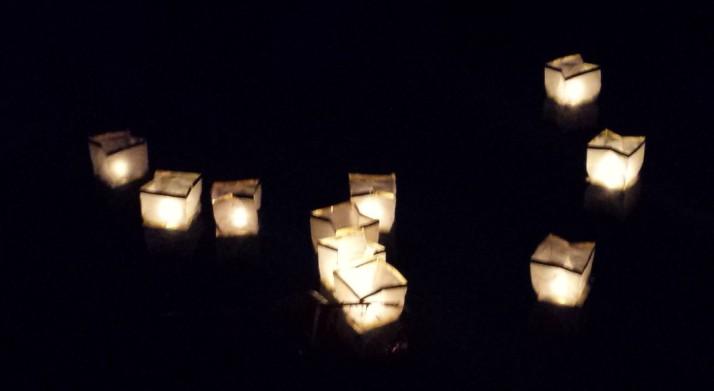 פסטיבל טעם כנרת 2014 בין התאריכים 16-27/12