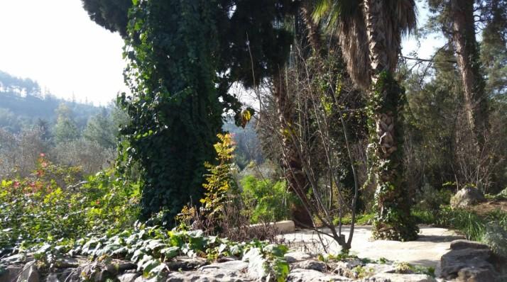 """סיור במפעל """"ברא צמחים"""" ביקנעם וסדנה טבעונית עם יגאל קוטין"""