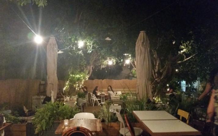 ציונה - בית קפה, מסעדה וגלריה