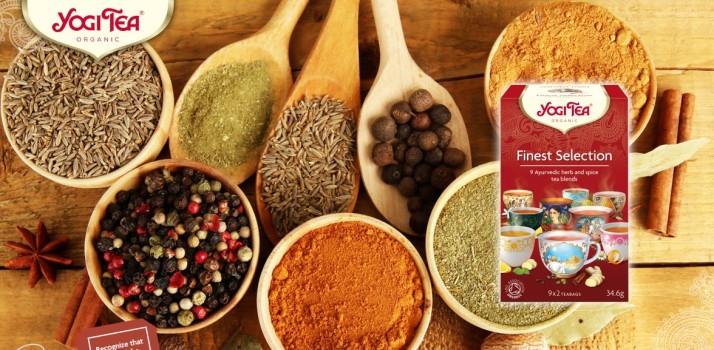 הכירו את יוגי תה אורגני Yogi Tea organic