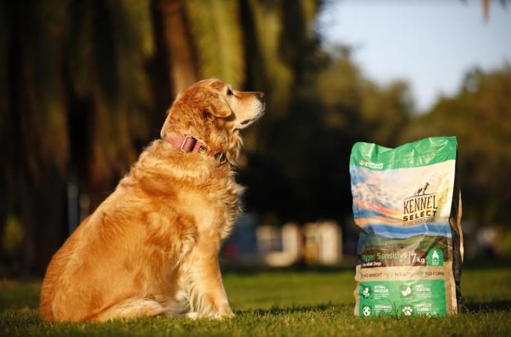חדש מצמח ישראפט Kennel Select Hyper Sensitive מזון סופר פרמיום לכלבים מחלבון העתיד